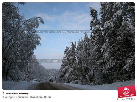 Купить «В зимнем плену», фото № 27761, снято 28 декабря 2005 г. (c) Андрей Явнашан / Фотобанк Лори