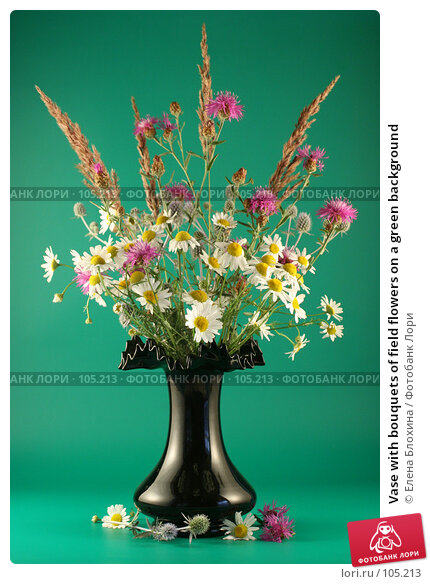 Vase with bouquets of field flowers on a green background, фото № 105213, снято 26 мая 2017 г. (c) Елена Блохина / Фотобанк Лори
