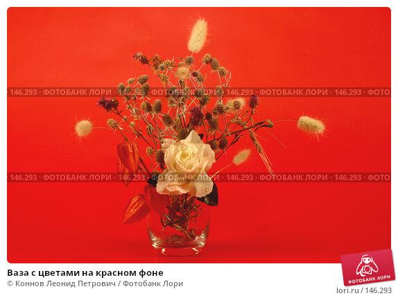Ваза с цветами на красном фоне, фото № 146293, снято 13 декабря 2007 г. (c) Коннов Леонид Петрович / Фотобанк Лори