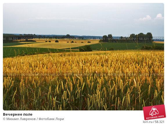 Вечернее поле, фото № 58321, снято 5 июля 2006 г. (c) Михаил Лавренов / Фотобанк Лори