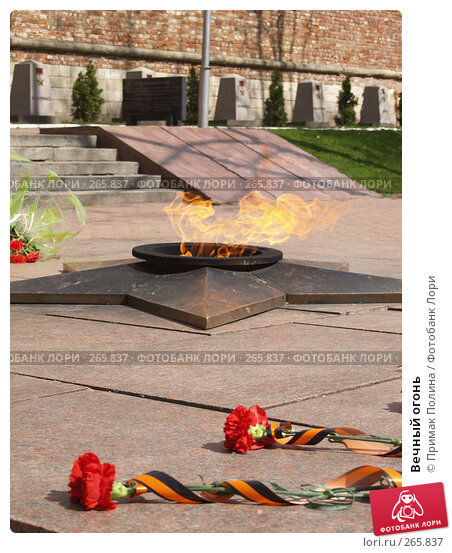 Купить «Вечный огонь», фото № 265837, снято 26 апреля 2008 г. (c) Примак Полина / Фотобанк Лори