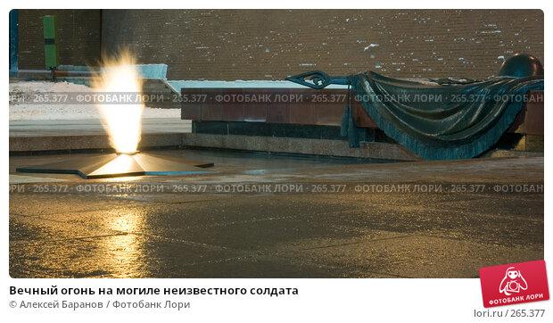 Вечный огонь на могиле неизвестного солдата, фото № 265377, снято 10 января 2008 г. (c) Алексей Баранов / Фотобанк Лори