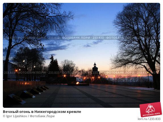 Вечный огонь в Нижегородском кремле, фото № 233833, снято 21 марта 2008 г. (c) Igor Lijashkov / Фотобанк Лори