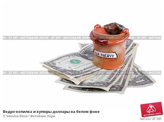 Ведро-копилка и купюры доллары на белом фоне, фото № 37197, снято 16 января 2007 г. (c) Vdovina Elena / Фотобанк Лори