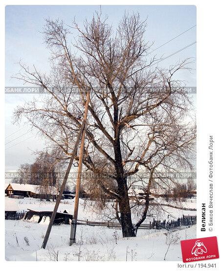 Купить «Великан», фото № 194941, снято 3 января 2008 г. (c) Бяков Вячеслав / Фотобанк Лори