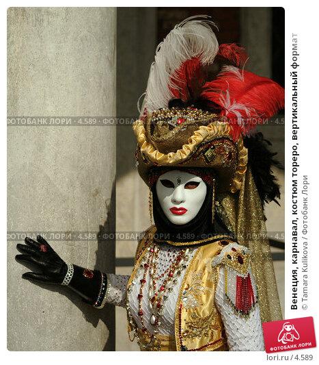 Венеция, карнавал, костюм тореро, вертикальный формат, фото № 4589, снято 28 февраля 2006 г. (c) Tamara Kulikova / Фотобанк Лори