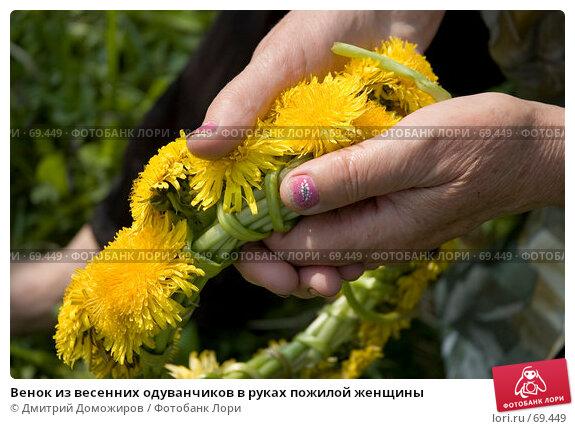 Венок из весенних одуванчиков в руках пожилой женщины, фото № 69449, снято 13 мая 2006 г. (c) Дмитрий Доможиров / Фотобанк Лори