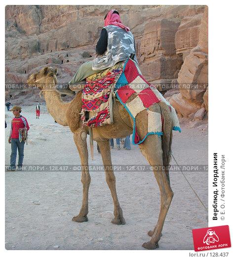 Верблюд. Иордания, фото № 128437, снято 25 ноября 2007 г. (c) Екатерина Овсянникова / Фотобанк Лори
