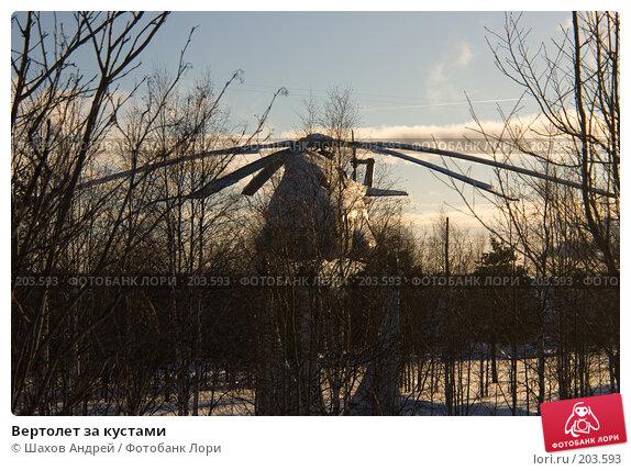Вертолет за кустами, фото № 203593, снято 16 февраля 2008 г. (c) Шахов Андрей / Фотобанк Лори
