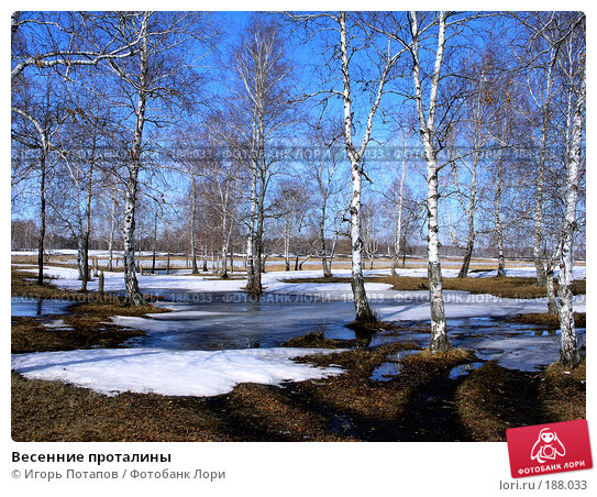 Весенние проталины, фото № 188033, снято 22 октября 2006 г. (c) Игорь Потапов / Фотобанк Лори