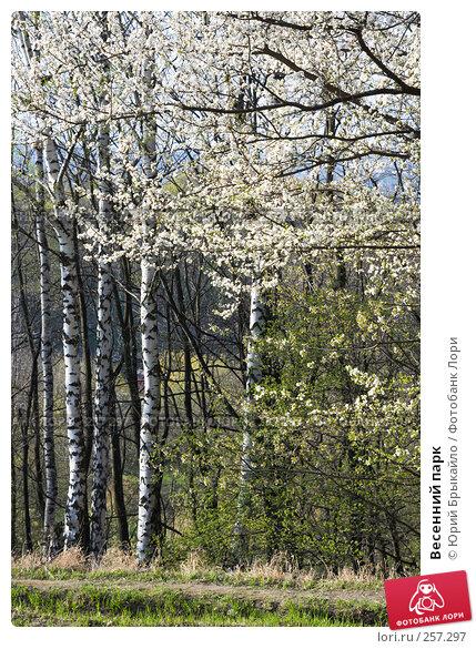 Весенний парк, фото № 257297, снято 14 апреля 2008 г. (c) Юрий Брыкайло / Фотобанк Лори