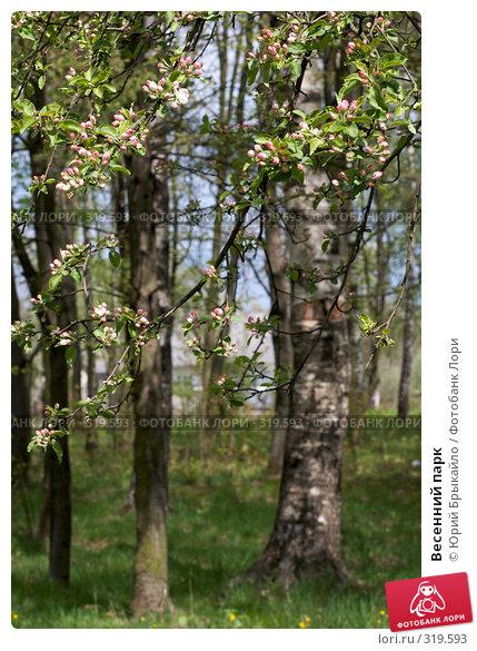 Весенний парк, фото № 319593, снято 27 апреля 2008 г. (c) Юрий Брыкайло / Фотобанк Лори