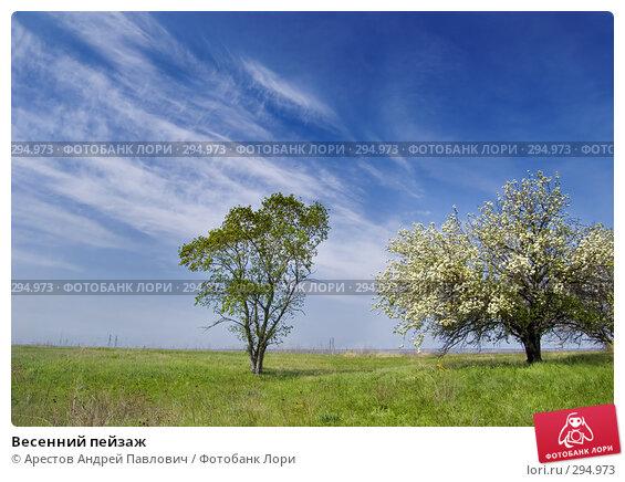 Весенний пейзаж, фото № 294973, снято 20 апреля 2008 г. (c) Арестов Андрей Павлович / Фотобанк Лори
