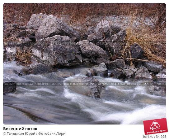 Весенний поток, фото № 34925, снято 22 апреля 2007 г. (c) Талдыкин Юрий / Фотобанк Лори