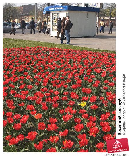 Купить «Весенний поцелуй», фото № 230401, снято 25 апреля 2007 г. (c) Ирина Борсученко / Фотобанк Лори