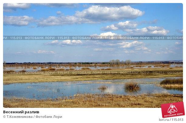 Весенний разлив, фото № 115013, снято 29 октября 2016 г. (c) Т.Кожевникова / Фотобанк Лори