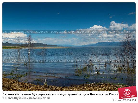 Купить «Весенний разлив Бухтарминского водохранилища в Восточном Казахстане», фото № 27204225, снято 21 мая 2015 г. (c) Ольга Шуклина / Фотобанк Лори