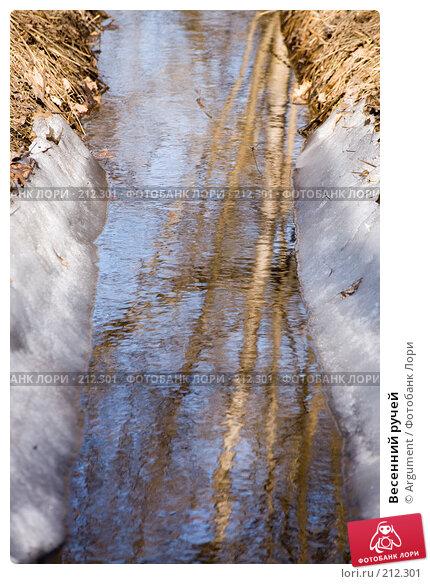 Весенний ручей, фото № 212301, снято 28 марта 2007 г. (c) Argument / Фотобанк Лори