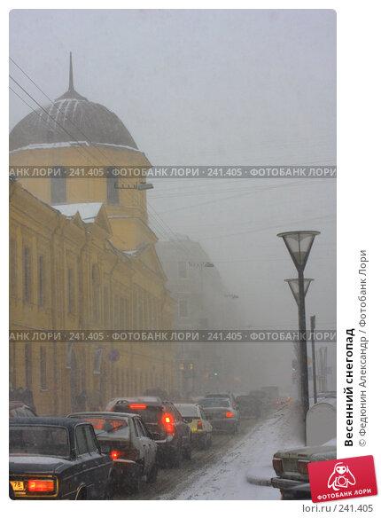 Весенний снегопад, фото № 241405, снято 25 марта 2008 г. (c) Федюнин Александр / Фотобанк Лори