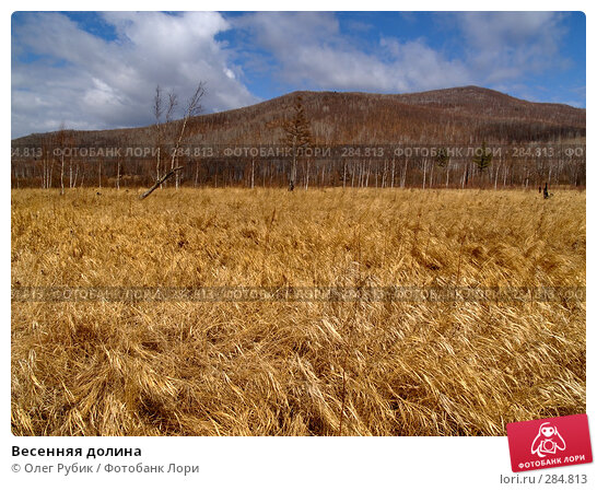 Весенняя долина, фото № 284813, снято 29 марта 2008 г. (c) Олег Рубик / Фотобанк Лори