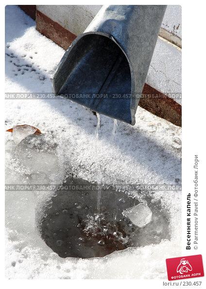 Весенняя капель, фото № 230457, снято 24 февраля 2008 г. (c) Parmenov Pavel / Фотобанк Лори