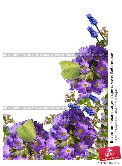 Весенняя композиция с цветами и бабочками, фото № 162877, снято 24 марта 2017 г. (c) Елена Блохина / Фотобанк Лори