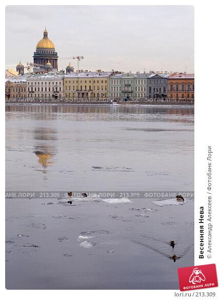 Весенняя Нева, эксклюзивное фото № 213309, снято 20 февраля 2008 г. (c) Александр Алексеев / Фотобанк Лори