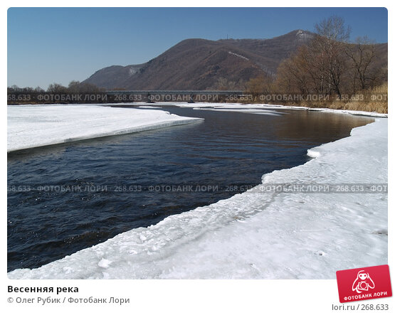 Купить «Весенняя река», фото № 268633, снято 20 марта 2008 г. (c) Олег Рубик / Фотобанк Лори