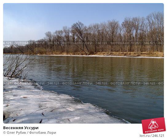 Весенняя Уссури, фото № 246121, снято 8 апреля 2008 г. (c) Олег Рубик / Фотобанк Лори