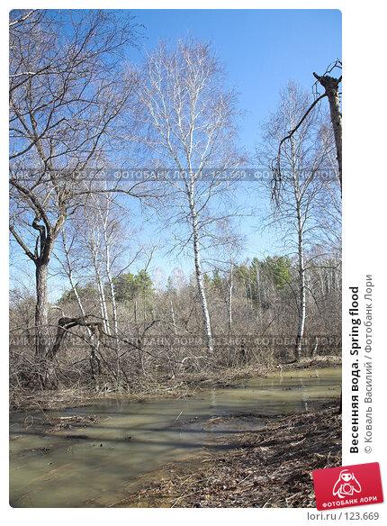 Весенняя вода. Spring flood, фото № 123669, снято 22 апреля 2007 г. (c) Коваль Василий / Фотобанк Лори