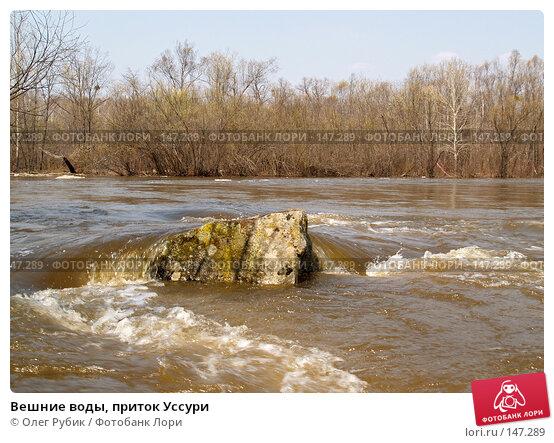 Вешние воды, приток Уссури, фото № 147289, снято 29 апреля 2007 г. (c) Олег Рубик / Фотобанк Лори