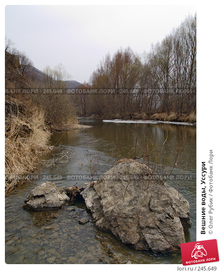 Вешние воды, Уссури, фото № 245649, снято 6 апреля 2008 г. (c) Олег Рубик / Фотобанк Лори