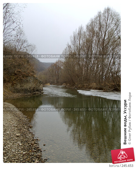 Вешние воды, Уссури, фото № 245653, снято 6 апреля 2008 г. (c) Олег Рубик / Фотобанк Лори