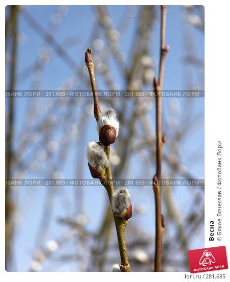 Купить «Весна», фото № 281685, снято 5 апреля 2008 г. (c) Бяков Вячеслав / Фотобанк Лори