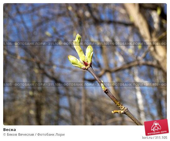 Весна, фото № 311105, снято 27 апреля 2008 г. (c) Бяков Вячеслав / Фотобанк Лори