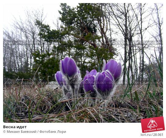 Весна идет, фото № 28061, снято 9 апреля 2006 г. (c) Михаил Баевский / Фотобанк Лори