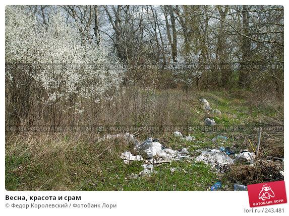 Весна, красота и срам, фото № 243481, снято 4 апреля 2008 г. (c) Федор Королевский / Фотобанк Лори