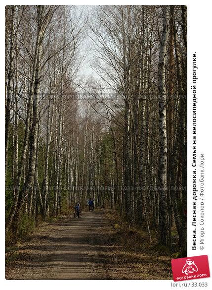 Весна. Лесная дорожка. Семья на велосипедной прогулке., фото № 33033, снято 27 апреля 2017 г. (c) Игорь Соколов / Фотобанк Лори
