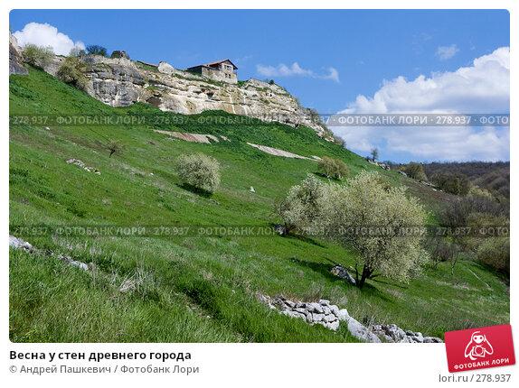 Весна у стен древнего города, фото № 278937, снято 28 апреля 2007 г. (c) Андрей Пашкевич / Фотобанк Лори