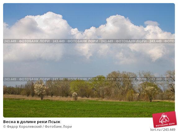Весна в долине реки Псыж, фото № 243449, снято 4 апреля 2008 г. (c) Федор Королевский / Фотобанк Лори