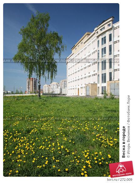 Весна в городе, фото № 272009, снято 4 мая 2008 г. (c) Игорь Веснинов / Фотобанк Лори