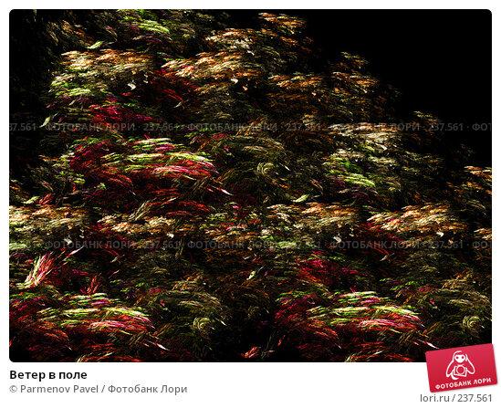Ветер в поле, иллюстрация № 237561 (c) Parmenov Pavel / Фотобанк Лори