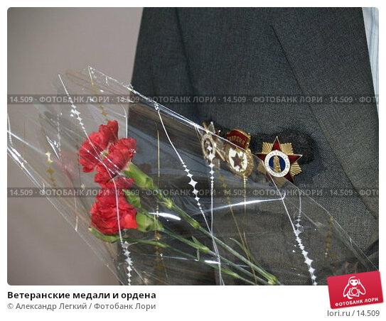 Ветеранские медали и ордена, фото № 14509, снято 25 августа 2006 г. (c) Александр Легкий / Фотобанк Лори