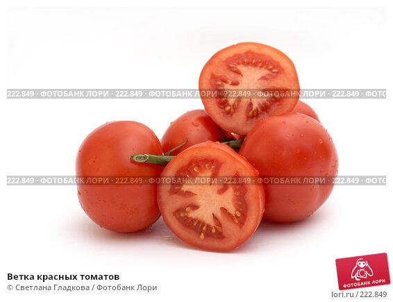 Ветка красных томатов, фото № 222849, снято 23 декабря 2007 г. (c) Cветлана Гладкова / Фотобанк Лори
