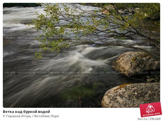 Ветка над бурной водой, эксклюзивное фото № 336669, снято 11 августа 2007 г. (c) Горшков Игорь / Фотобанк Лори