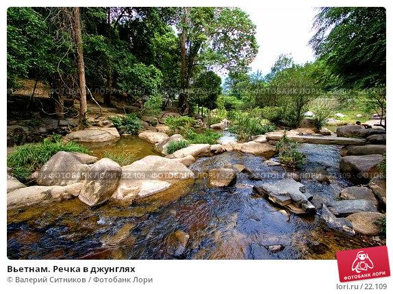 Купить «Вьетнам. Речка в джунглях», фото № 22109, снято 11 февраля 2007 г. (c) Валерий Ситников / Фотобанк Лори