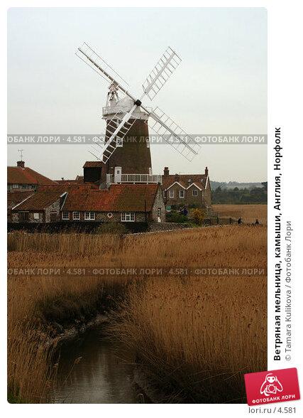 Ветряная мельница, камыши, Англия, Норфолк, фото № 4581, снято 15 апреля 2006 г. (c) Tamara Kulikova / Фотобанк Лори