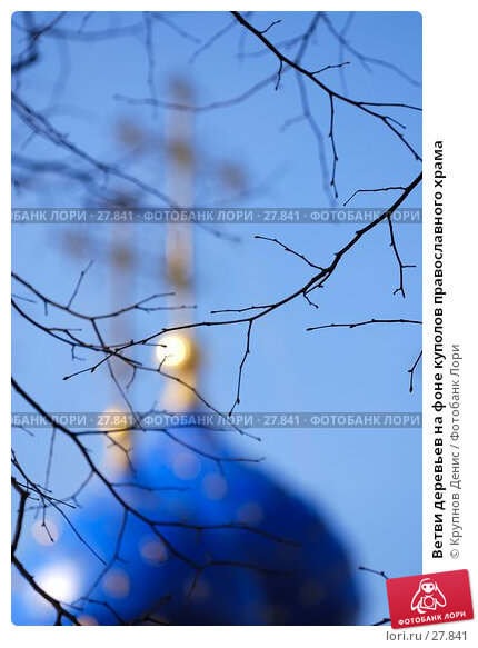 Ветви деревьев на фоне куполов православного храма, фото № 27841, снято 20 февраля 2017 г. (c) Крупнов Денис / Фотобанк Лори