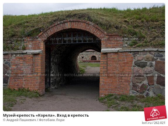 Вход в крепость, фото № 262021, снято 20 января 2017 г. (c) Андрей Пашкевич / Фотобанк Лори