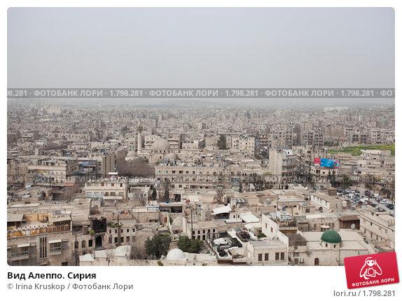 Вид Алеппо. Сирия, фото № 1798281, снято 24 июня 2017 г. (c) Irina Kruskop / Фотобанк Лори